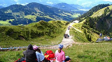 Preissl Ralf: Berglauf - Hochgratberglauf